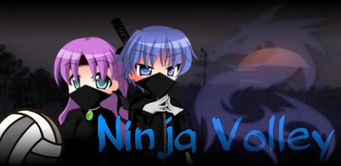 ninja volley
